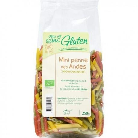 PENNE ANDES 3 COUL 250G